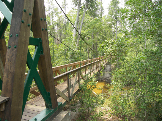 Suspension Bridge on Sweetwater Trail