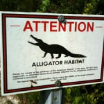 Alligator Habitat Sign