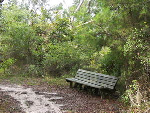 Naval Live Oaks Nature Trail