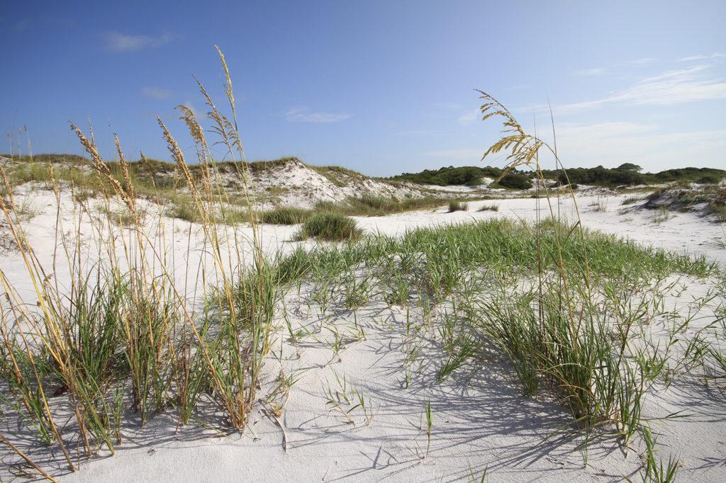 Dunes at Topsail Hill Preserve State Park