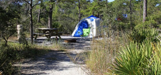 Photo of tent site at Topsail Hill Preserve State Park