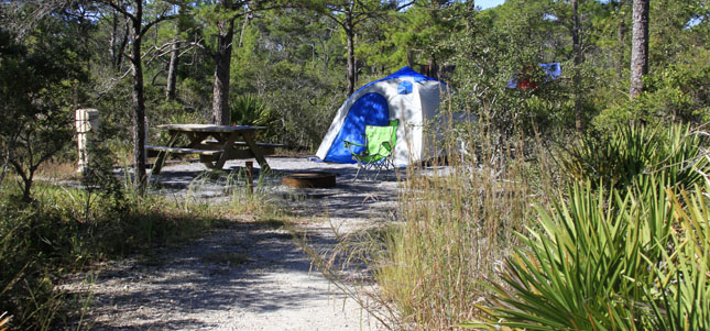 Tour Topsail Hill Preserve State Park Outdoor Gulf Coast