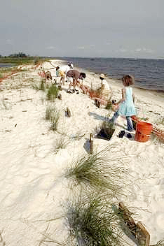 Beach Clean Up in Gulf Breeze