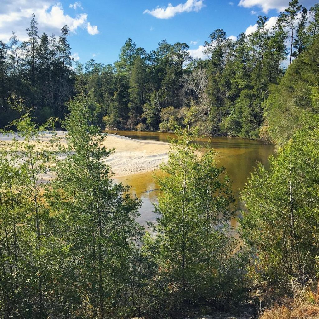 Juniper Creek, Blackwater River State Forest