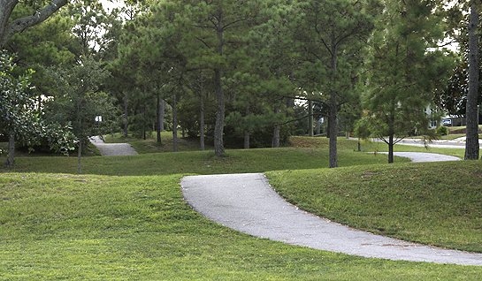 Walking trails at Bayview Park