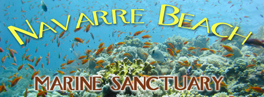 Navarre Beach Marine Sanctuary