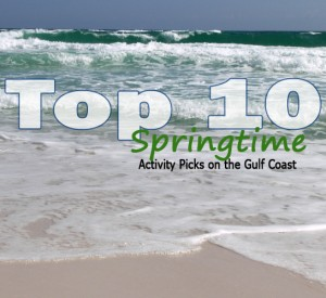 Top 10 Springbreak Picks on the Gulf Coast