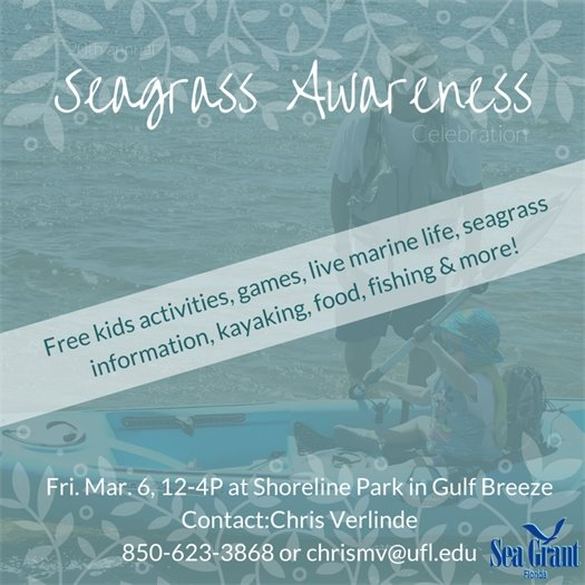 Seagrass Awareness Celebration
