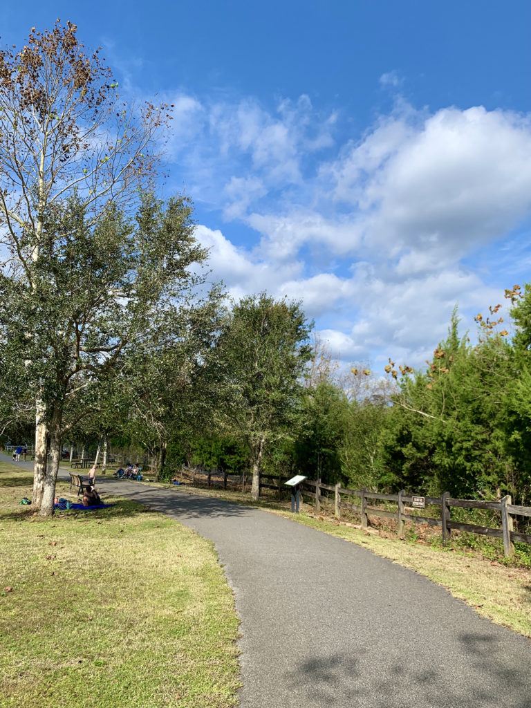 Walking path at Bagdad Mill Site Park
