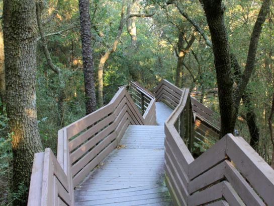 Bay Bluffs Park Boardwalk