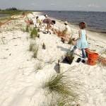 Beach Clean Up in Gulf Breeze