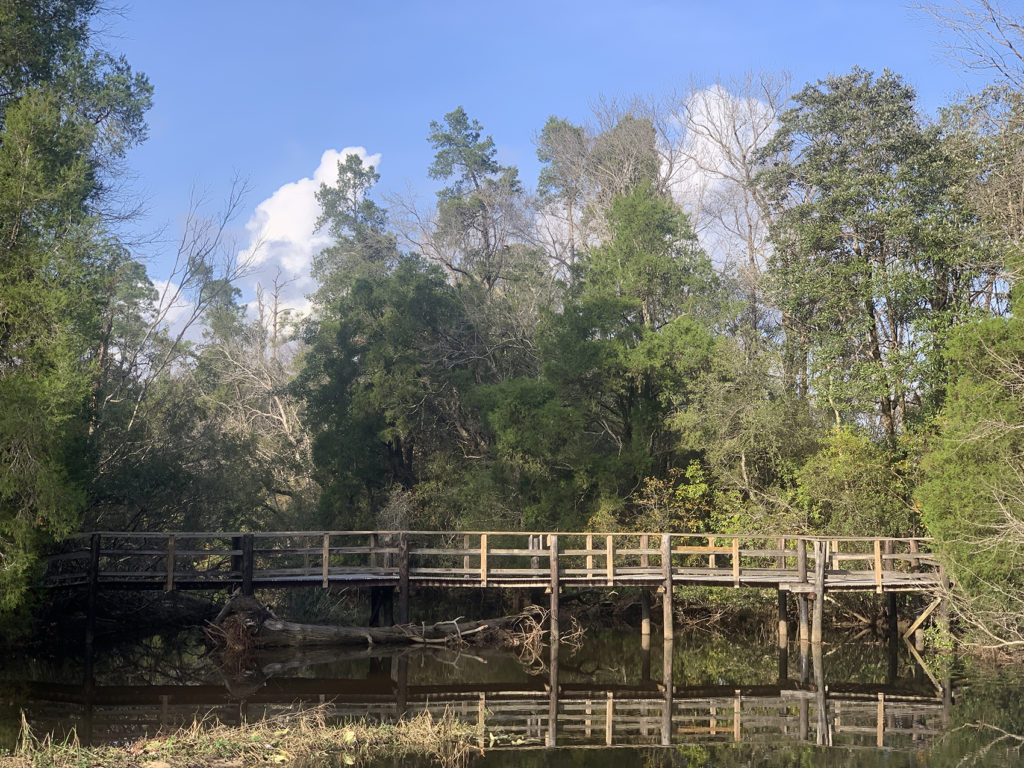 Dog-Friendly Hiking Trails in Pensacola | Outdoor Gulf Coast of