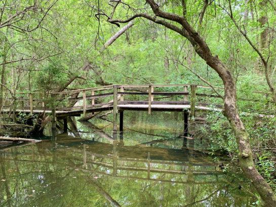 Edward Ball Nature Preserve