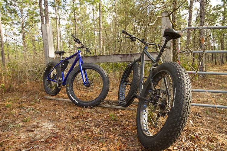 Fat Tire Bikes