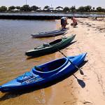 Kayak Bayview Park