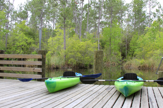 Kayak launch at Graham Creek Nature Preserve