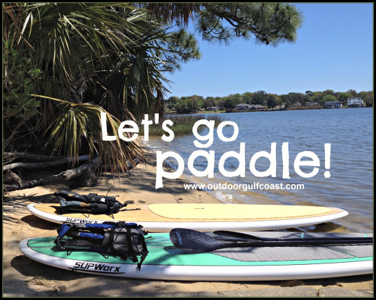 Let's go paddle