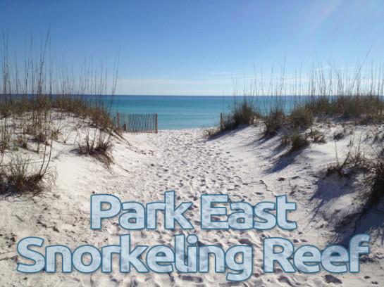 Park East Snorkeling Reef